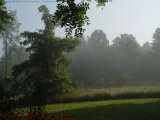 Pastoral Morning Fog, Groveland, NY