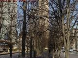 Winter's Bare Tree Path, Christian Science Plaza, Boston