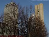Bare Trees, Prudential at Christian Science Plaza, Boston