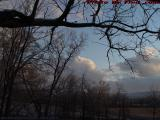 Bare Trees and Winter Clouds at Sunset, Groveland, NY