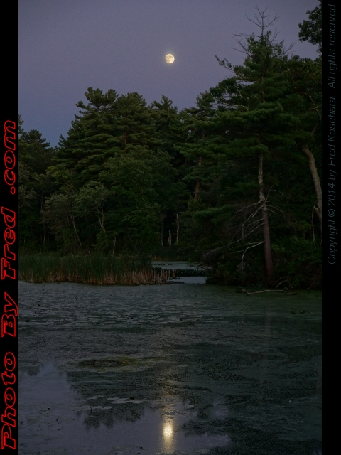 Full Harvest Moon Rising Over Crystal Pond, Peabody, Mass., photo by Fred Koschara, displayed Sept. 9, 2014 on PhotoByFred.com